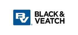 19 BV Logo Stacked RGB 300